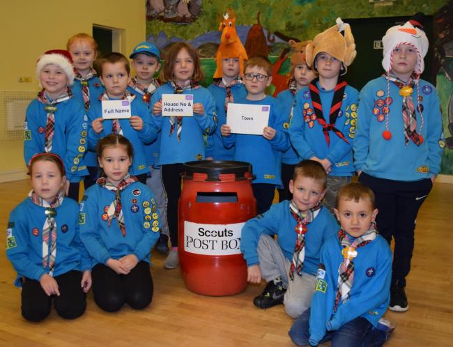 The Wee County Scouts are offering a helping hand this Christmas