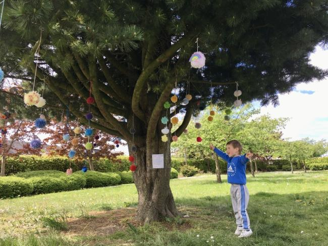Young Adam, son of Louise, delighted after hanging one of his own's pom poms on the tree