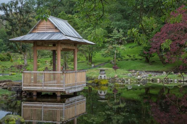 The Japanese Garden at Cowden Castle opened for an evening in September 2016, midway through its restoration