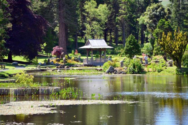 The Japanese Garden at Cowden, Clackmannanshire
